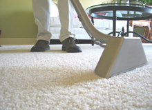Sterling Cleaning and Maintenance - carpet cleaning