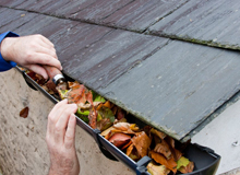 Sterling Cleaning and Maintenance - guttering and fascia